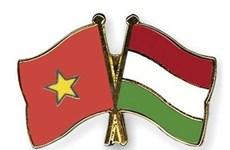 70 ans de relations avec Roumanie et Hongrie: le Vietnam échange des messages de félicitations