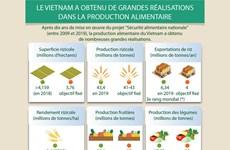Le Vietnam a obtenu de grande réalisations dans la production alimentaire