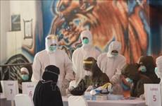 COVID-19 : baisse du nombre de cas d'infection dans certains pays d'Asie du Sud-Est