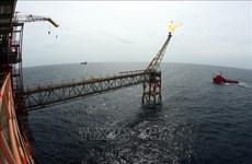 Vietsovpetro met à flot la base d'une plate-forme pétrolière du gisement de Bach Ho