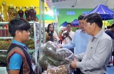 La 32e foire du ginseng de Ngoc Linh attire la foule