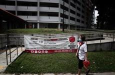 Singapour enregistre un record du nombre de cas de dengue en une semaine