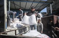 Le Vietnam s'engage à octroyer 50.000 dollars aux activités d'assistance aux réfugiés palestiniens