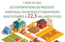 Exportations de produits agricoles, sylvicoles et aquatiques estimées à 22,3 milliards d'USD
