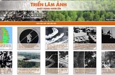 """""""L'aspiration de se lever"""", un panorama de la catastrophe de l'agent orange au Vietnam"""