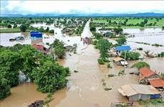 Crues : le Camboge distribuera plus de 5 000 tonnes de semences de riz aux sinistrés