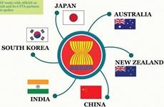 RCEP offre des perspectives au Vietnam et à la région