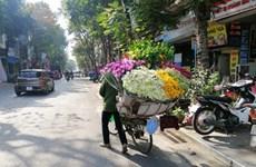 Les rues hanoïennes au rythme des saisons des fleurs