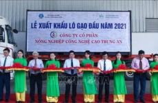 Le Vietnam exportera 1 600 tonnes de riz à prix élevés vers Singapour et la Malaisie
