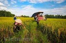 Le développement agricole et rural toujours au centre des priorités du Parti