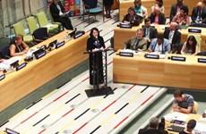 Le Conseil économique et social des Nations Unies (ECOSOC) et les empreintes du Vietnam (Suite)