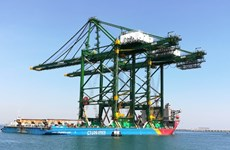 """Doosan Vina exporte trois grues RMQC """"made in Vietnam"""" vers l'Inde"""