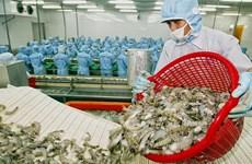 Renforcement des exportations de crevettes vers le Canada