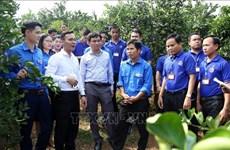 Vietnam-Laos : échanges renforcés entre les jeunes