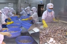 Les exportations de produits aquatiques vers la Chine devraient atteindre 1,2 mld de dollars en 2019