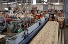 Les exportations de produits sylvicoles ciblent 12,5 milliards de dollars en 2020