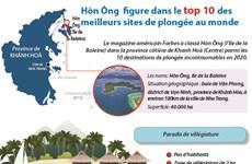 Hòn Ông  figure dans le top 10 des meilleurs sites de plongée au monde