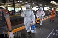 COVID-19 : le président indonésien ordonne d'effectuer de tests rapides à grande échelle