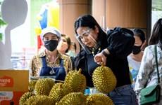 COVID-19 : l'évolution de l'épidémie dans des pays d'Asie du Sud-Est