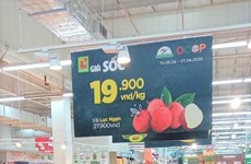 Le thaïlandais Central Retail commercialisera 1.000 tonnes de litchis de Bac Giang