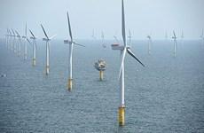 Le Danemark aide le Vietnam à développer l'énergie éolienne offshore