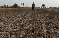 La Thaïlande face à une grave pénurie d'eau
