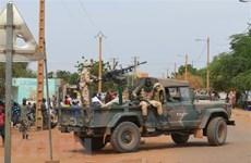 Le Vietnam soutient l'indépendance, la souveraineté et l'intégrité territoriale du Mali