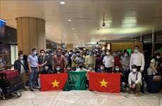 Rapatriement de 270 citoyens vietnamiens de République de Chypre et d'Arabie saoudite