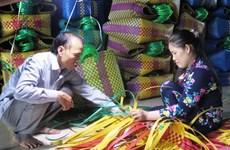 Plus de 9,6 millions de travailleurs ruraux reçoivent une formation professionnelle