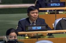 Le Vietnam appelle les parties en Syrie à renforcer le dialogue