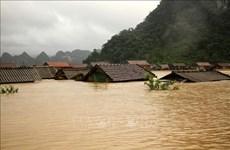 Le Vietnam cherche à limiter les pertes causées par les catastrophes naturelles