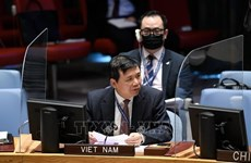 Le Vietnam exhorte les parties à accepter la proposition de paix pour le Yémen dirigée par l'ONU