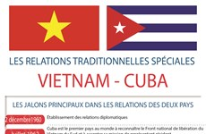 Les relations traditionnelles spéciales Vietnam-Cuba