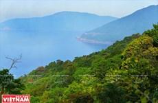 La péninsule de Son Trà, un cadeau de la nature pour Da Nang