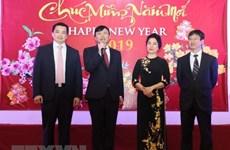 Des Viet kieu aux Etats-Unis et en France accueillent le Têt traditionnel