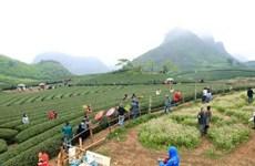 Approbation de l'aménagement global du futur site touristique national de Moc Chau-Trang