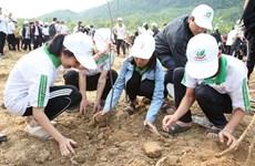 Lancement du Mois des jeunes 2019 à Binh Dinh