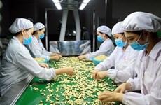 Noix de cajou: le cours pourra plus élevé cette année