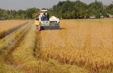 Le secteur agricole en pénurie d'environ 3,2 millions de travailleurs qualifiés en 2020