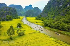 Ninh Binh s'accélère la connexion touristique