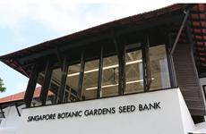 Singapour crée sa première banque de graines