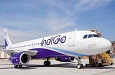 La compagnie aérienne low cost de l'Inde IndiGo Airlines exploitera la 2e ligne directe au Vietnam