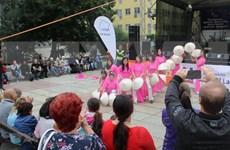 Le Vietnam à une fête culturelle en République tchèque