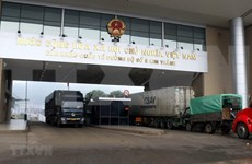 COVID-19 : pas d'activités d'import-export supplémentaires aux portes frontalières