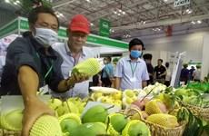 Diversification des marchés à l'export des fruits et légumes