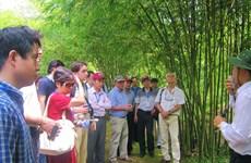 Coronavirus : Quang Tri et Vinh Phuc renforcent les mesures préventives
