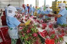 Efforts pour donner un nouvel élan aux exportations vers le marché chinois