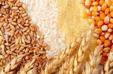 Le Cambodge pourra exporter 5 millions de tonnes de produits agricoles cette année