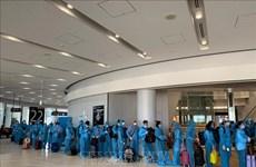 COVID-19: Rapatrier 342 citoyens vietnamiens depuis le Japon
