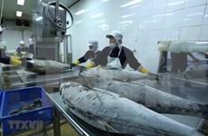 Le commerce vietnamo-israélien atteint 649,4 M de dollars en cinq mois